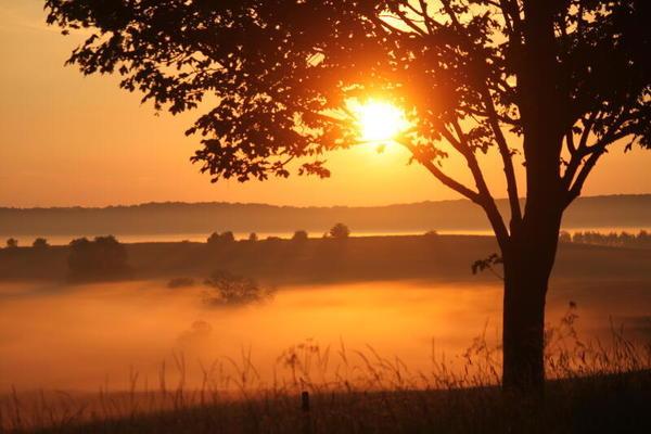 Morgenidylle (Foto: Anja Wetzel)