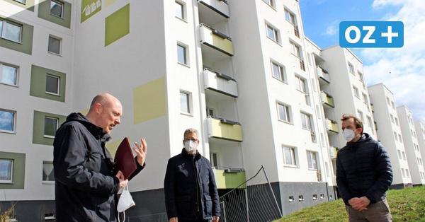 Mieten in Greifswald: Darum sind Vier-Zimmer-Wohnungen so rar - und teuer