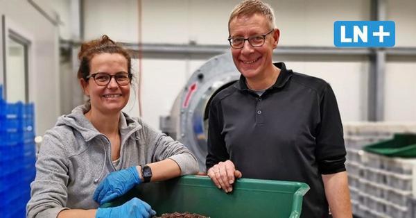 Das große Fressen: Farmer züchten Würmer für den Kompost