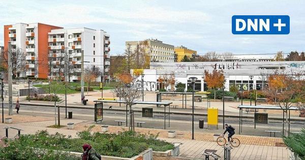 Dresdens Jugendhilfeausschuss kämpft weiter um Notbremse gegen Stadtbezirke