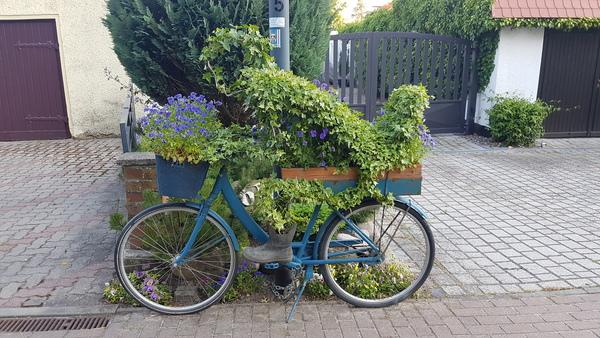 Hauptstraße in Elmenhorst: Erkennen Sie den Radfahrer? (Foto: Anja Levien)