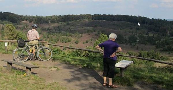 Der Talkessel Totengrund bei Wilsede ist eine der spektakulären Heidelandschaften. (Foto: Handourt Lüneburger Heide GmbH)