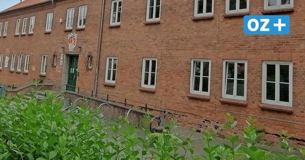 Wismar: Diesen Freizeitspaß gibt es im Kinder- und Jugendfreizeitzentrum zu erleben