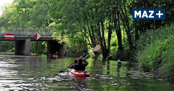 Königs Wusterhausen: Bootsverleihe und Touren für Ausflüge auf dem Wasser