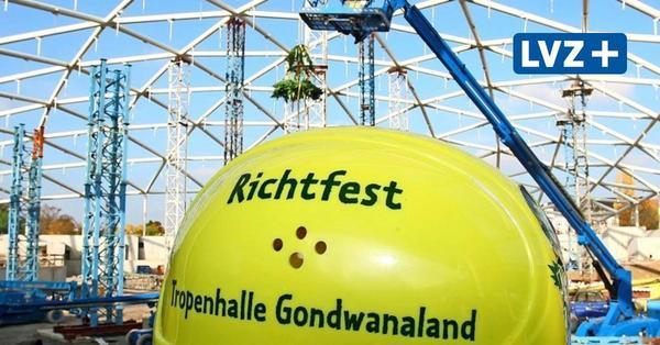 Gondwanaland feiert zehnten Geburtstag: Wie der Regenwald nach Leipzig kam