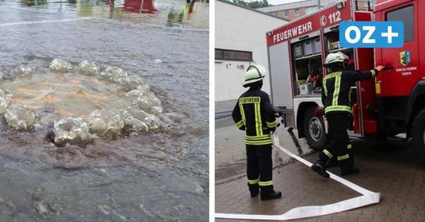 """Überflutete Keller durch Tief """"Xero"""" in MV: Hier regnete es besonders stark"""