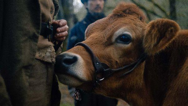 """First Cow — A Primeira Vaca da América"""