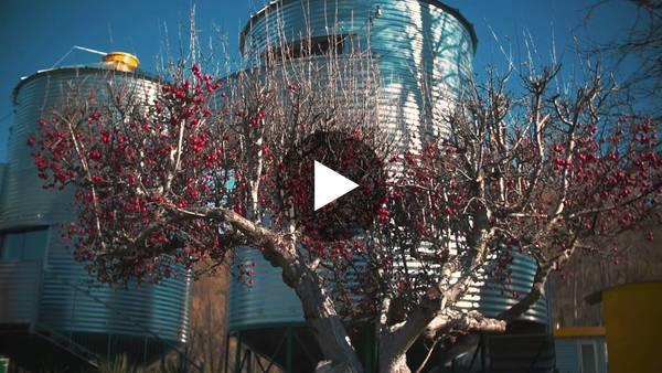 SiloStay Promotional Video 2016