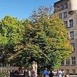 Schulsanierung: Wie der G9-Umbau an den Gymnasien im Süden Hannovers läuft