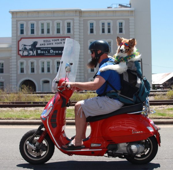 Meet the Scooter-Riding Man and Dog Duo Bringing Joy to the Streets of Durham