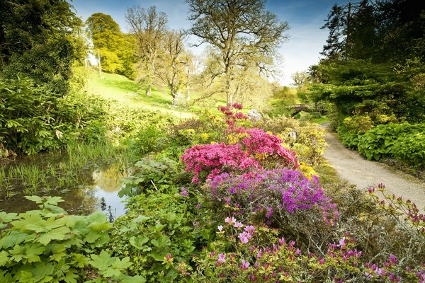 Check out beautiful Minterne Gardens, on our July front cover & hosting the Festival of Music