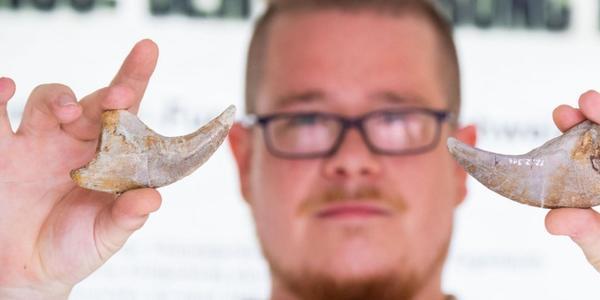Dino-ParkMünchehagen präsentiert zwei neue Saurier-Skelette