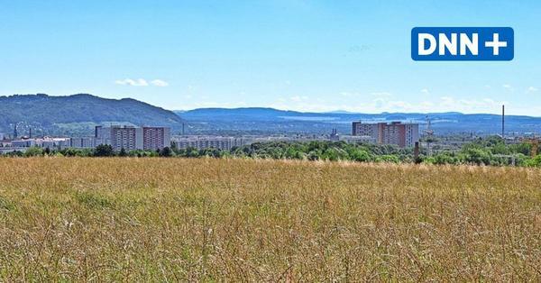 Bauen: Wo es in Dresden noch Grundstücke gibt