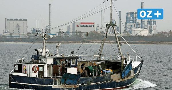 Wismar: Historischer Schleppnetzkutter hat jetzt 298 PS an Bord