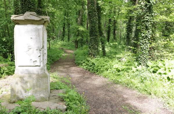 Blick in den ehemaligen Schlosspark in Wagenitz. Foto: Andreas Kaatz