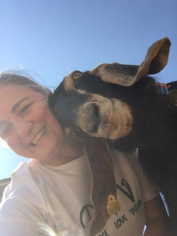 Having fun with a sanctuary resident.