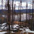 Fire Season's Impact on Our Water