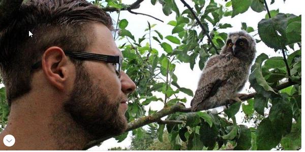 Verletztes Wildtier gefunden? Junger Verein in Vorpommern-Rügen hilft