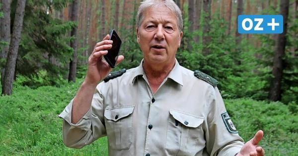Notruf bei Waldbrand nicht absetzbar: Ärger um schnelles Internet für Jägerhof