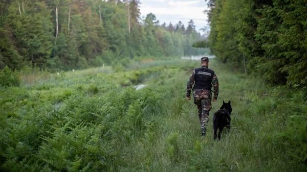 Illegale Einreisende – Litauen baut Zaun an der Grenze zu Belarus