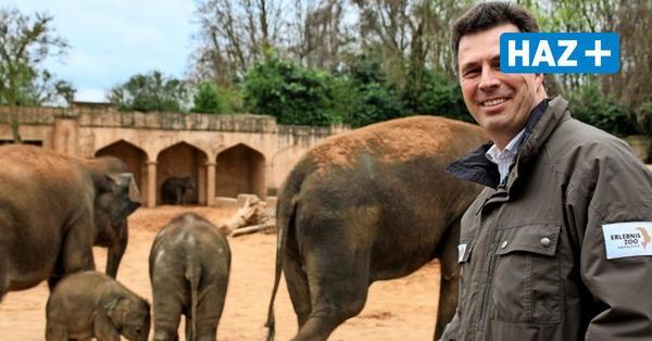 Interview mit Hannovers Zoo-Chef über die Aufgabe der Elefantenzucht