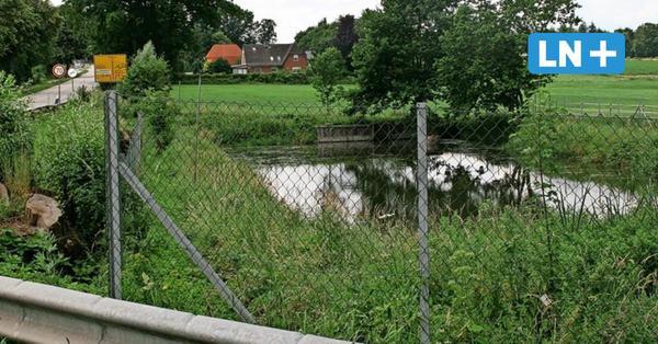 Teiche als Gefahr für Kinder: Lauenburg will Gewässer jetzt einzäunen