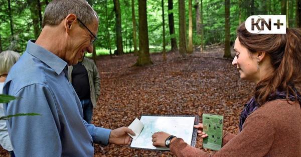Emkendorfer Lehrpfad im Naturpark Westensee soll erneuert werden