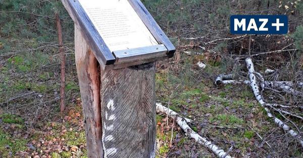 Wald- und Weltliteratur am Wegesrand