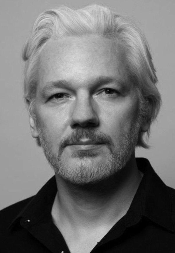 Brief der 120 für die Freiheit von Julian Assange