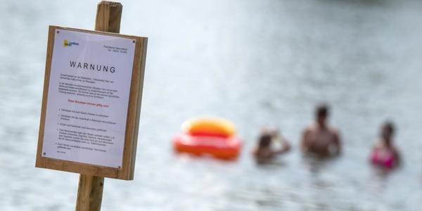 Blaualgen in Sachsen: Diese Seen sind betroffen