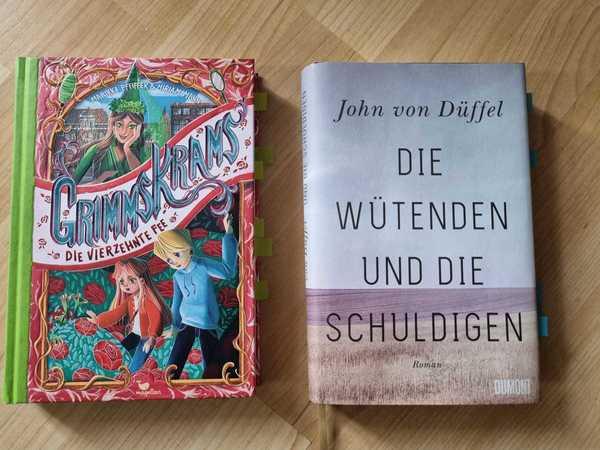 """Zwei Neuerscheinungen aus Potsdam: """"Grimmskrams. Die vierzehnte Fee"""" und """"Die wütenden und die Schuldigen"""". Foto: Sarah Kugler"""