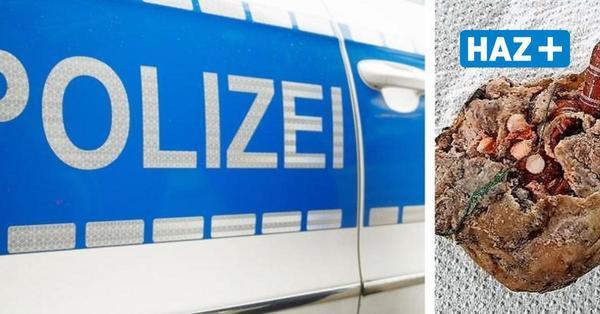 Zwei Hunde fressen Giftköder in Bothfeld: Polizei mahnt zur Vorsicht