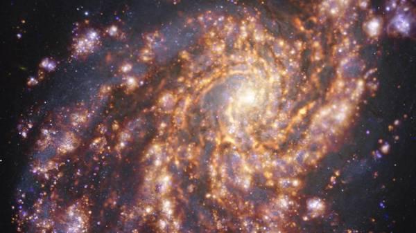 Spezial-Teleskop liefert neue Einblicke in das Leben junger Sterne