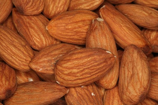 Experts forecast California will produce 320 million fewer pounds of almonds this year