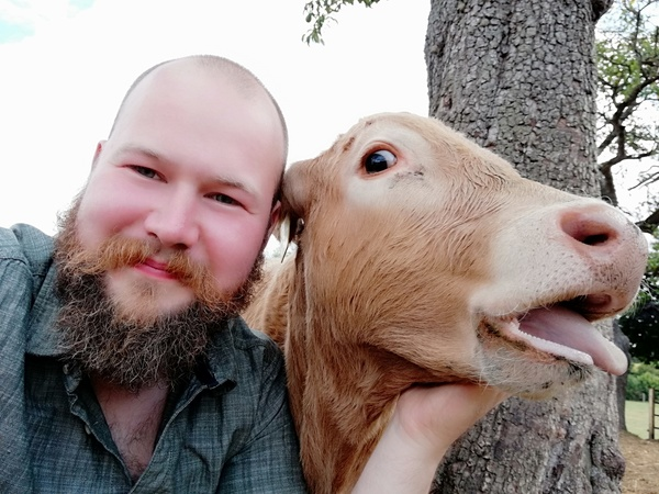 Auf dem Hof von Erik Kolmorgen in Arfrade können Besucher mit Kühen kuscheln.