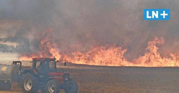 Flächenbrand in Dassendorf: Flammen schlagen viele Meter hoch