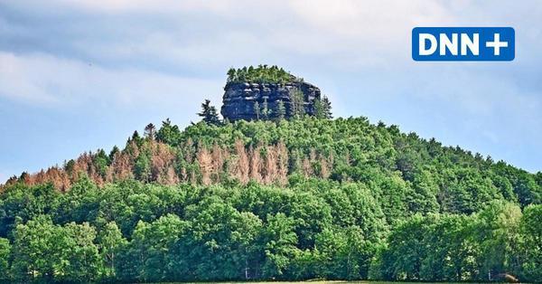 Sächsische Schweiz: Verkauf des Zirkelsteins kurz vor Abschluss