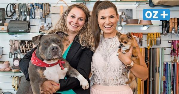 Rostock: Neuer Shop und Friseur-Salon für Hunde - Rostockerin expandiert