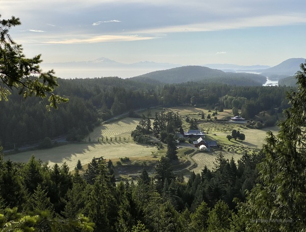 Early morning view from Glenwood Farm lookout by Terrill Welch