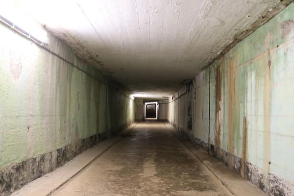 Lost Places in Teltow-Fläming: Museen, Bunker, Touren und Wanderwege