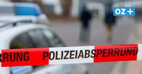Auf frischer Tat ertappt: Polizei stellt Einbrecher auf Firmengelände in Greifswald
