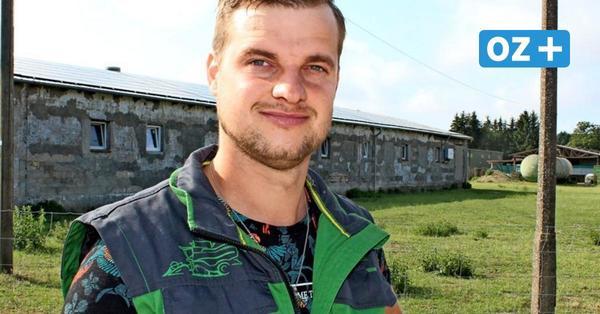 Landwirt aus Züssow: Deswegen ist Umstieg auf Fleisch aus Freilandhaltung schwierig