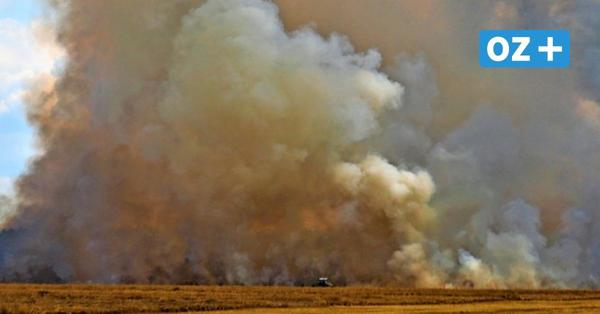 Wendisch Baggendorf: Großbrand bei Erntearbeiten
