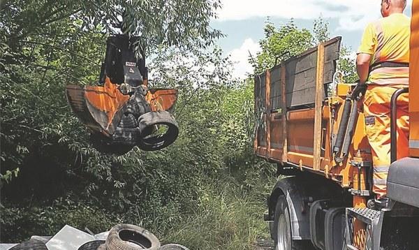 Auf der Suche nach den Umweltsündern - Heidekreis - Walsroder Zeitung