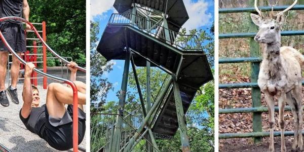 Sport, Kultur, Tiere: Das können Sie in Leipzig kostenlos erleben