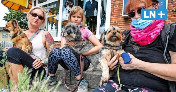 Gefährliche Grannen: Lübecker sorgen sich um ihre Hunde