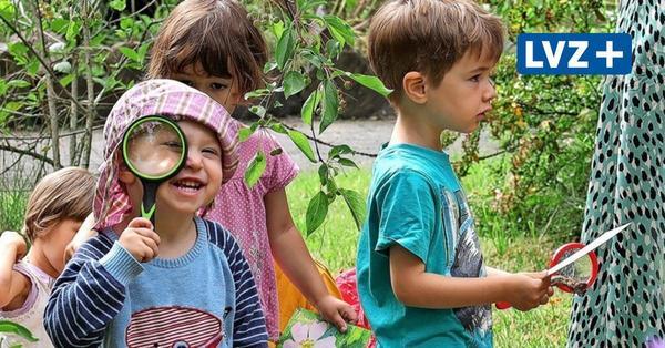 """Fünf Jahre Projekt """"Gartenkinder"""": Im Botanischen Garten Leipzig werkeln die Jüngsten in der """"Grünen Werkstatt"""""""