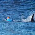 Shark advocates call for rebranding violent attacks as 'interactions'