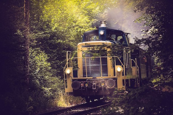 Train in the forest. Photo: Glenn Carstens Peter, commons.wikimedia.org, CC BY 3.0.
