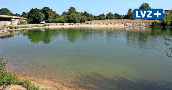Sind Blaualgen in Leipzigs Badeseen in diesem Jahr ein Problem?